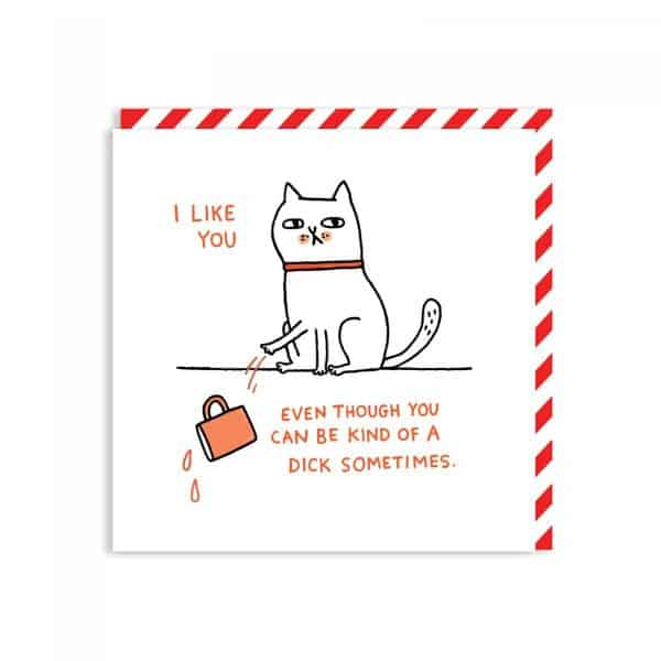 Dick Sometimes - Adult Humour Greetings Card