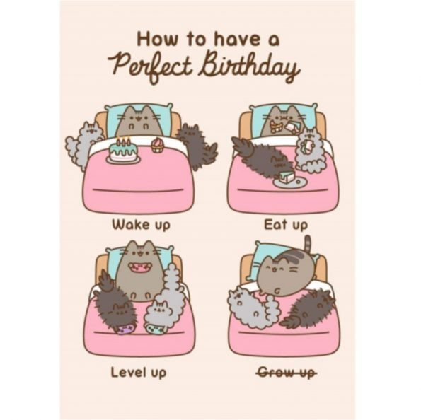 Pusheen's How to have a Perfect Birthday Greetings Card